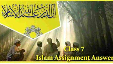 Class 7 Islam Assignment answer